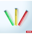 Transparent test tubes with colored liquids vector