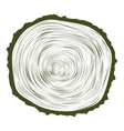 Tree wood slice natural years line circle ring vector