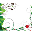 Green foliage and ladybug vector