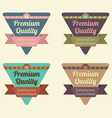 Set of triangle vintage retro badge vector