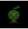 Apple silhouette filled with diiferent eco object vector