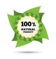 Eco icon green leaf  natural bio food vector