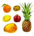 Tropical organic fruits collection vector