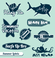 Surfing beach labels set vector