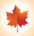 Autumn maple leaf on colorful background vector