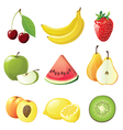 Set of 9 juicy fruits icons vector