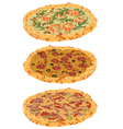 A set of different pizzas vector