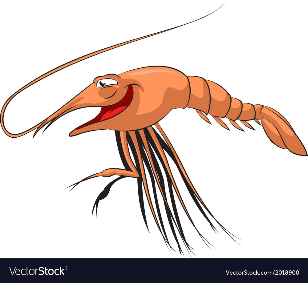 Cartoon shrimp vector | Price: 1 Credit (USD $1)