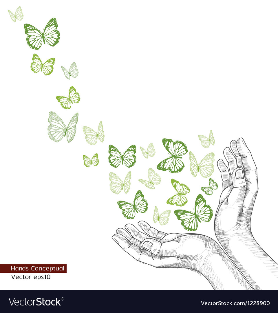 Drawing hands releasing butterfly vector | Price: 1 Credit (USD $1)