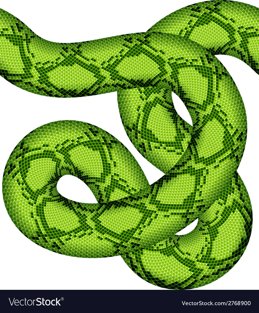 Green snake seamless vector | Price: 1 Credit (USD $1)