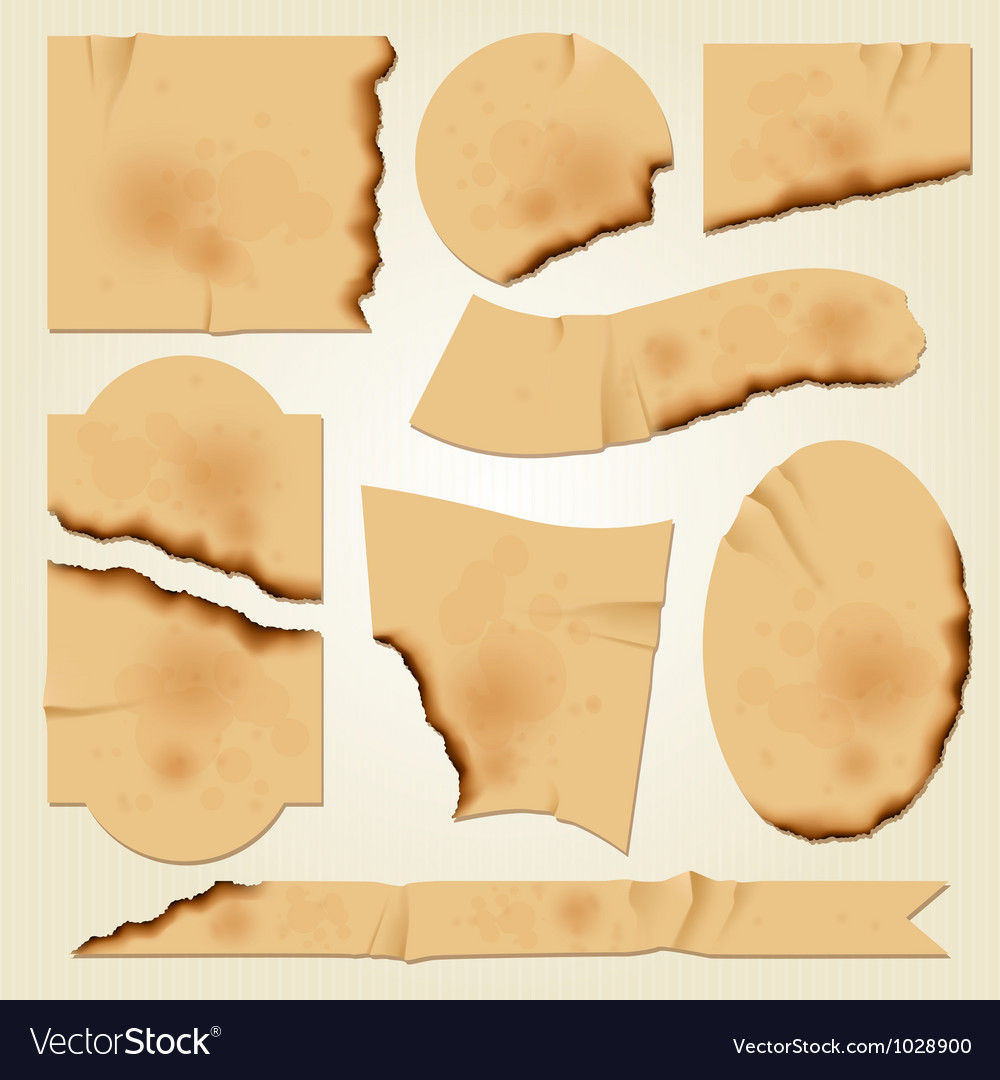 Set 4 burned old pieces of paper vector | Price: 1 Credit (USD $1)