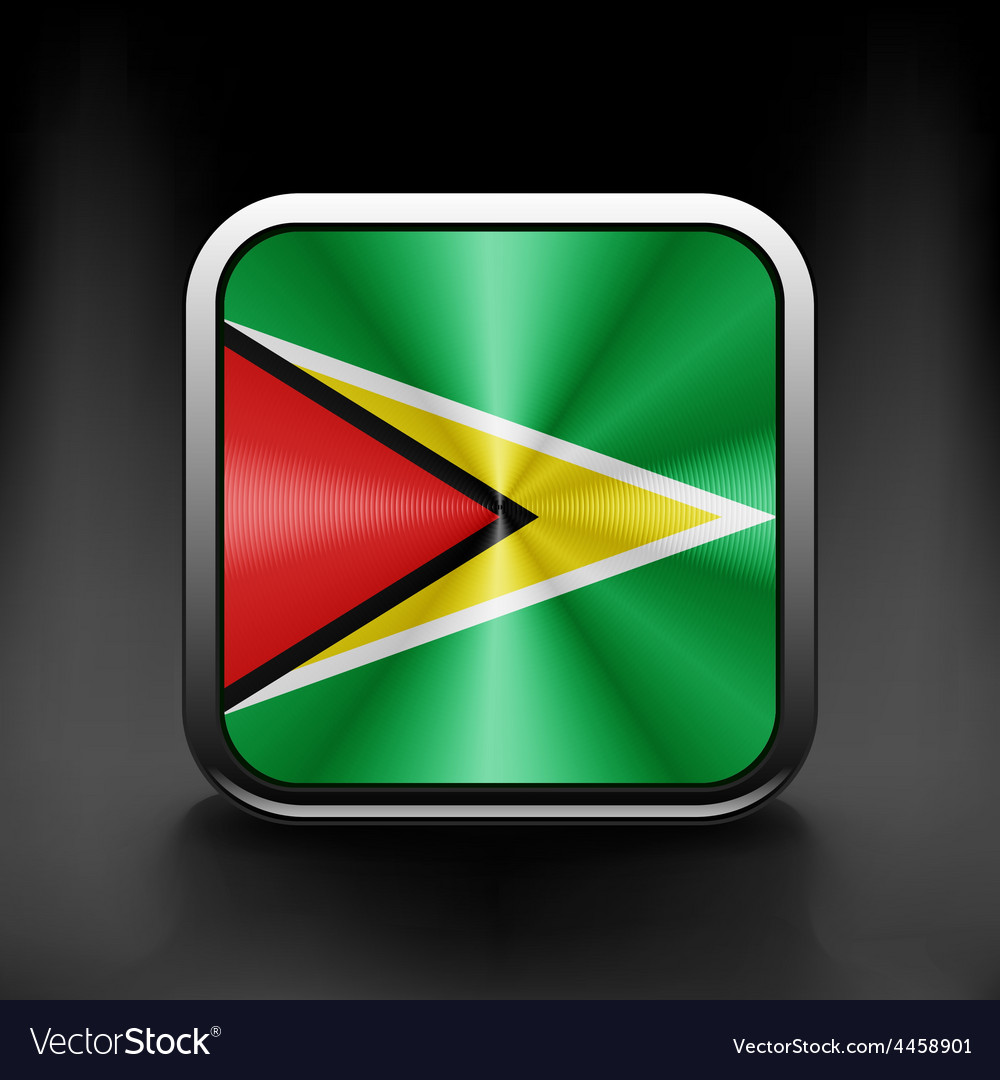 Guyana icon flag national travel icon country vector | Price: 1 Credit (USD $1)