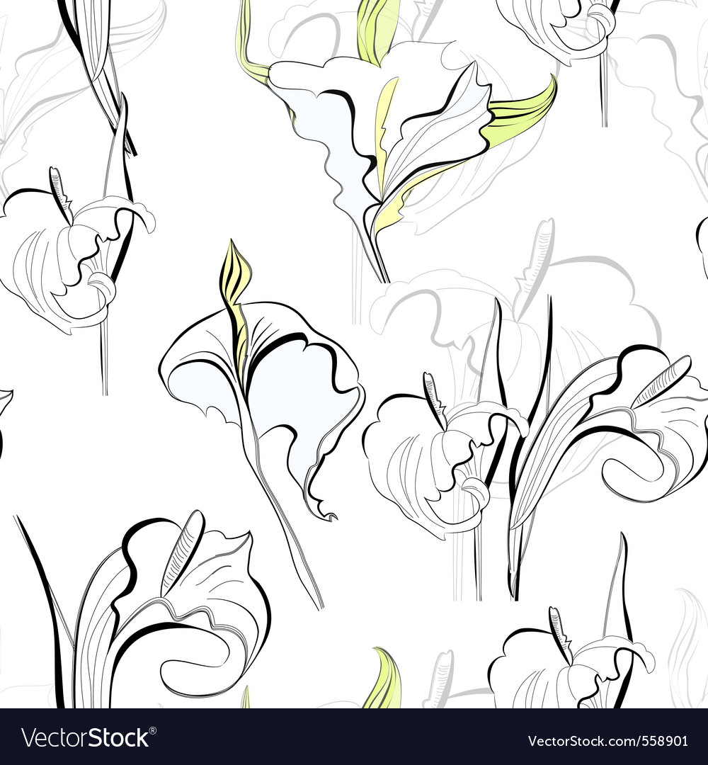 Seamless background with calla lilies flowers vector | Price: 1 Credit (USD $1)