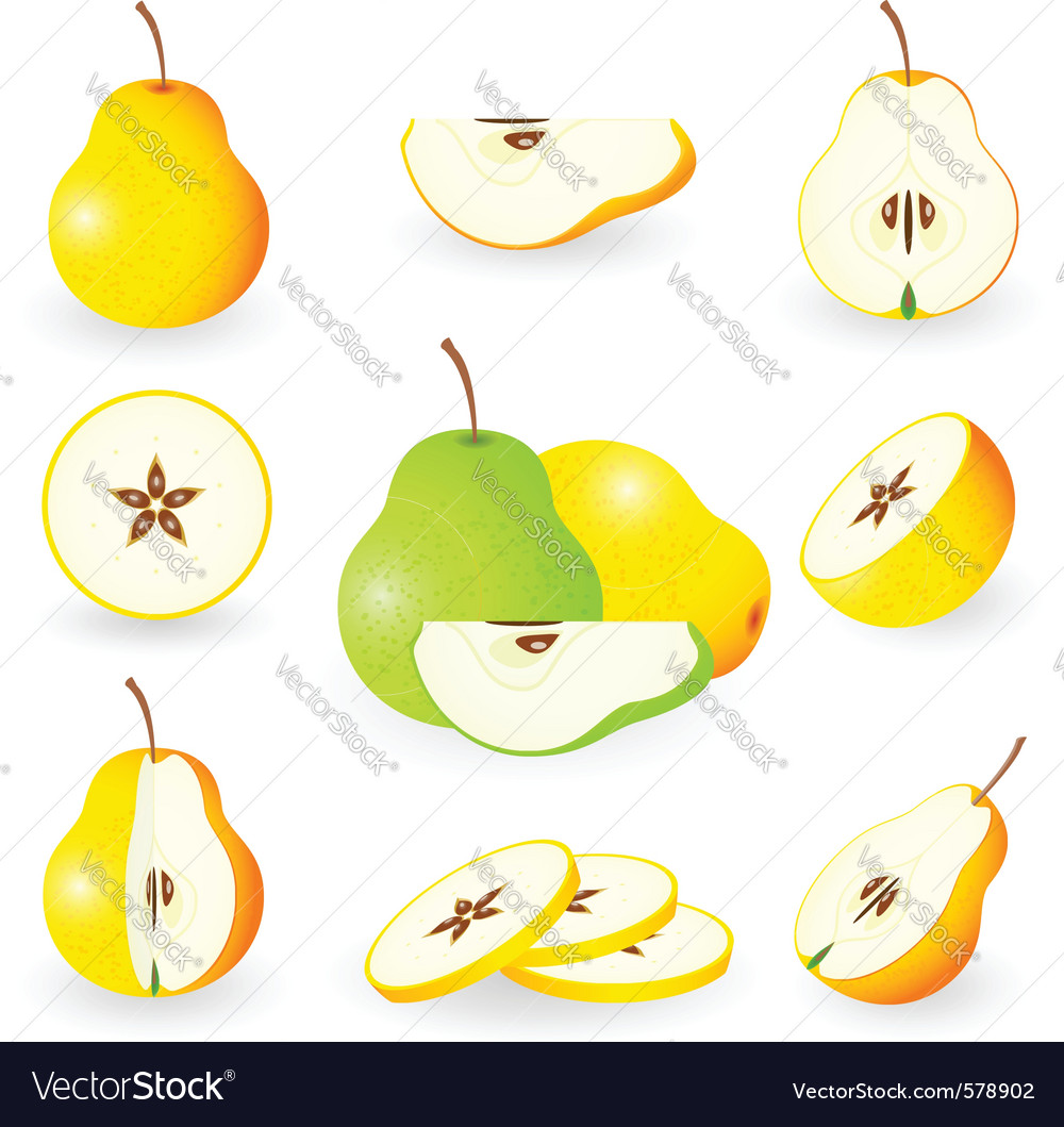 Icon set pear vector | Price: 1 Credit (USD $1)
