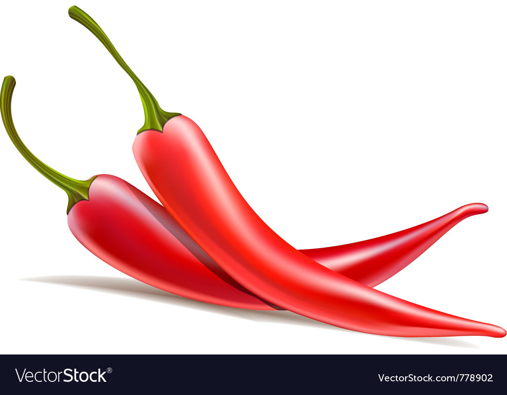 Two chili peppers vector | Price: 3 Credit (USD $3)