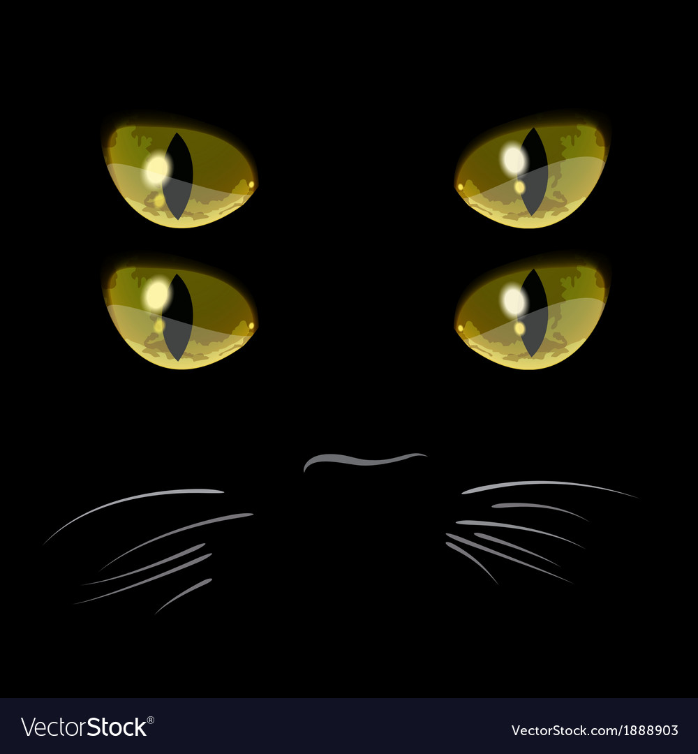 Closeup portrait of black cat with four eyes vector | Price: 1 Credit (USD $1)