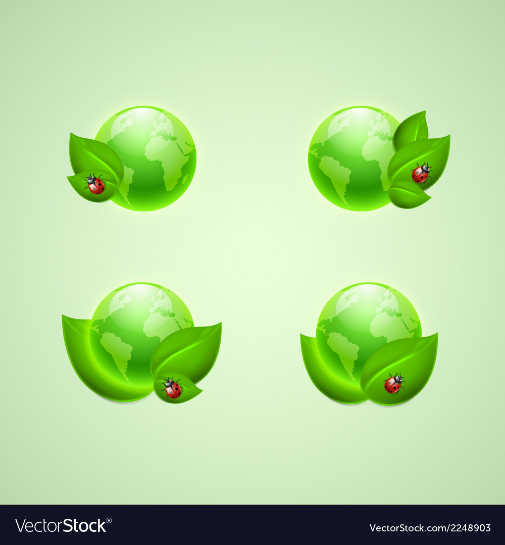 Leaves and ladybird with the globes vector | Price: 1 Credit (USD $1)
