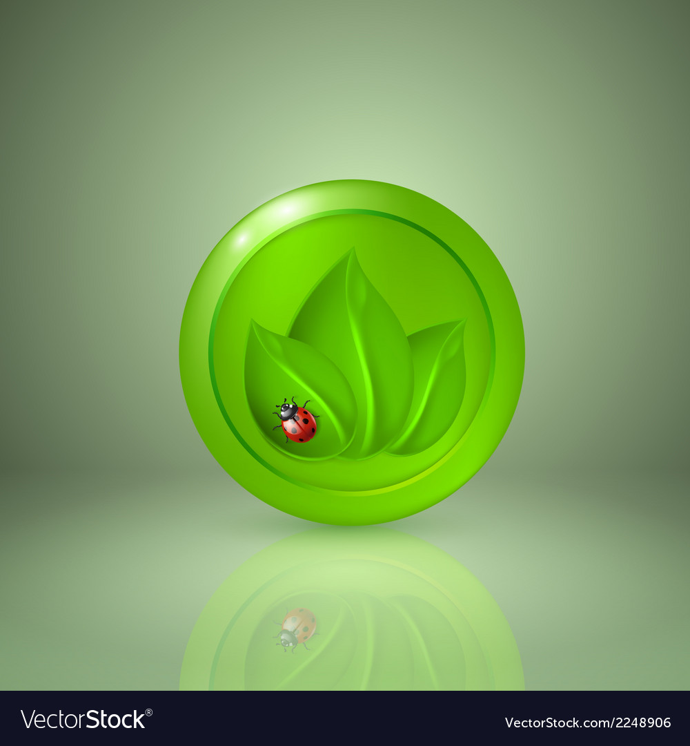 Three green leaves with ladybird vector | Price: 1 Credit (USD $1)