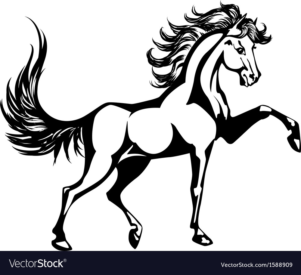 Horse 5 vector | Price: 1 Credit (USD $1)