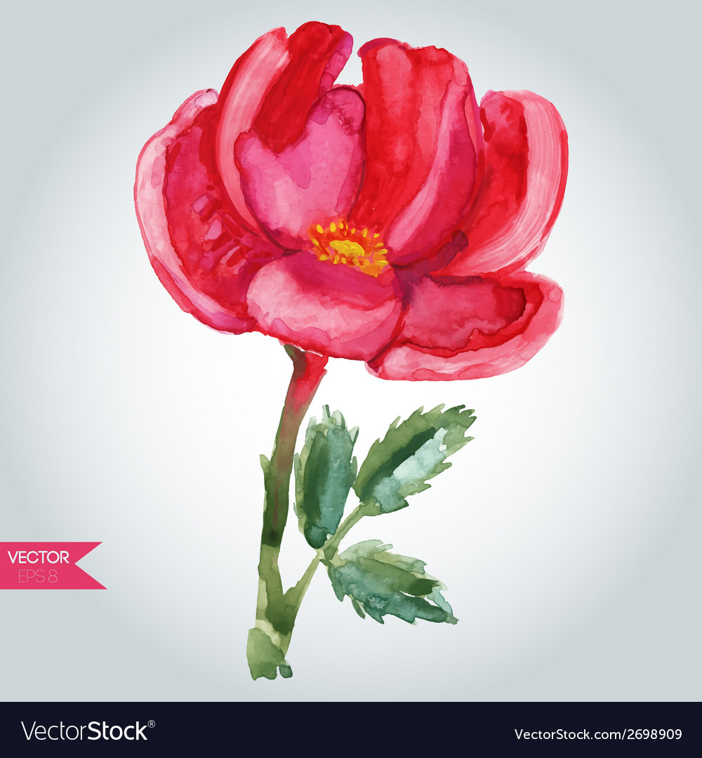 Pink wild rose vector | Price: 1 Credit (USD $1)