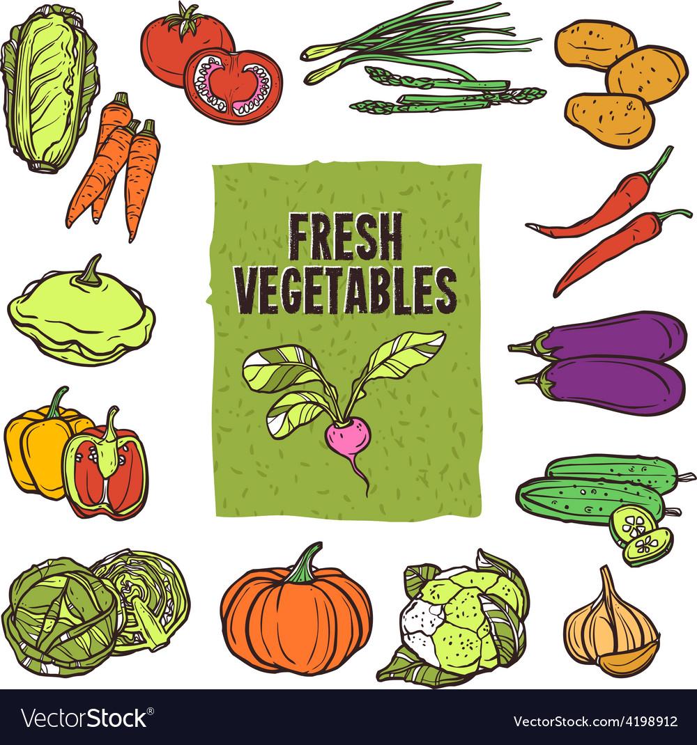 Vegetable sketch set vector | Price: 1 Credit (USD $1)