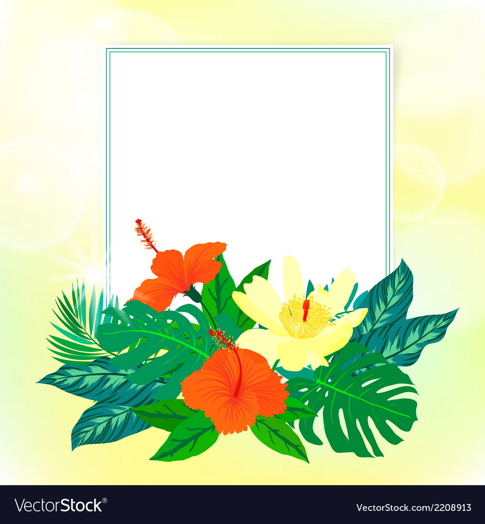 Square card with tropical decor vector | Price: 1 Credit (USD $1)