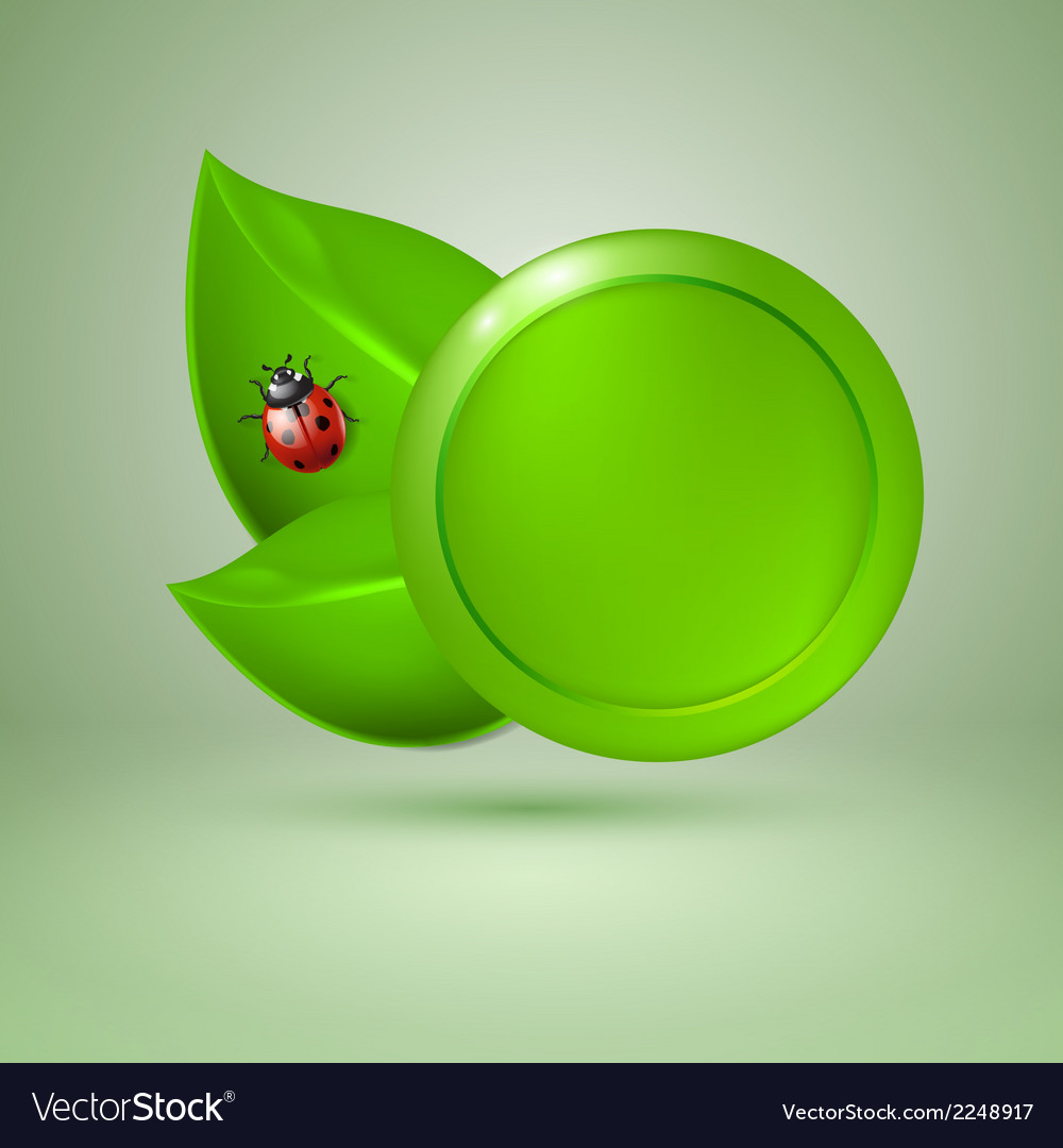 Two green leaves with ladybird vector   Price: 1 Credit (USD $1)