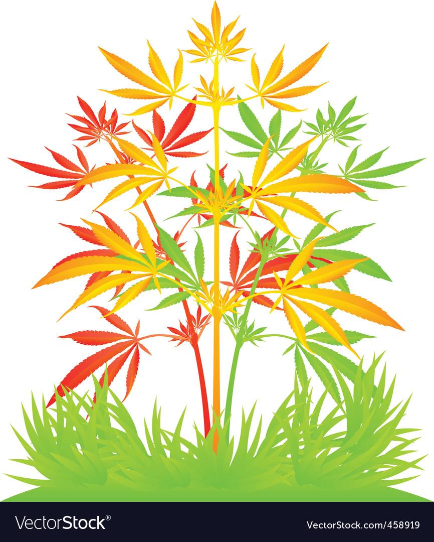 Rastafarian cannibis plant vector | Price: 1 Credit (USD $1)