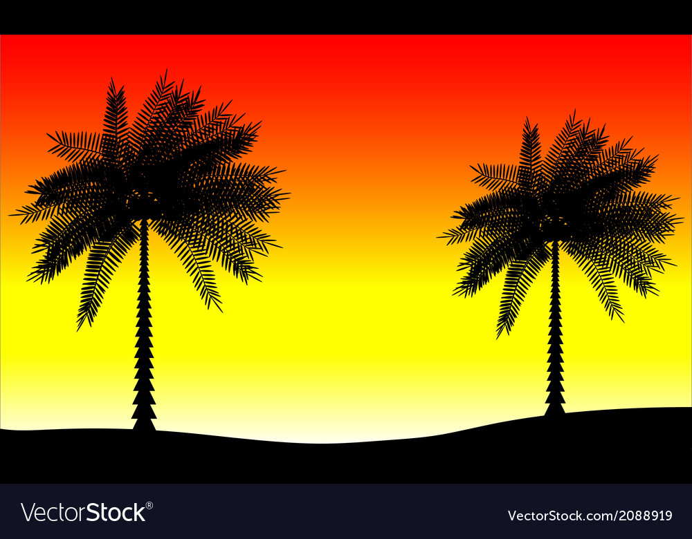 Tropic sunset vector   Price: 1 Credit (USD $1)
