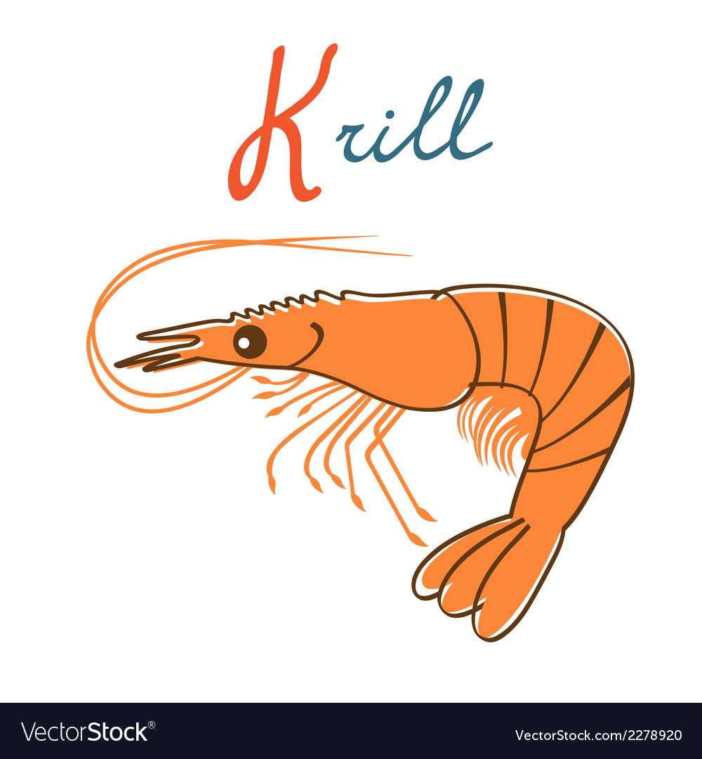 K is for krill vector | Price: 1 Credit (USD $1)