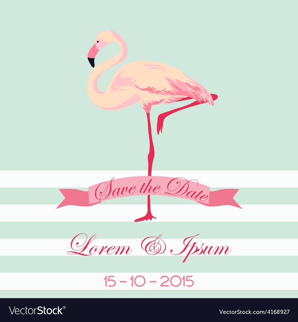 Save the date - wedding card with flamingo birds vector | Price: 1 Credit (USD $1)