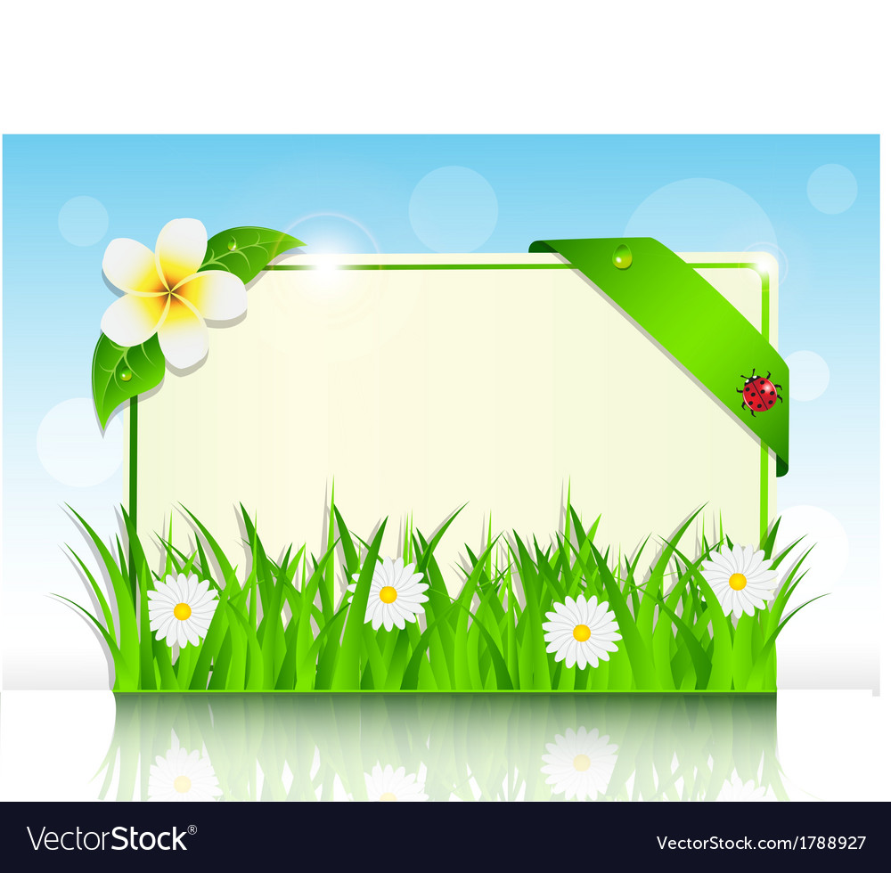 Sheet of paper in the green grass and flowers vector | Price: 1 Credit (USD $1)