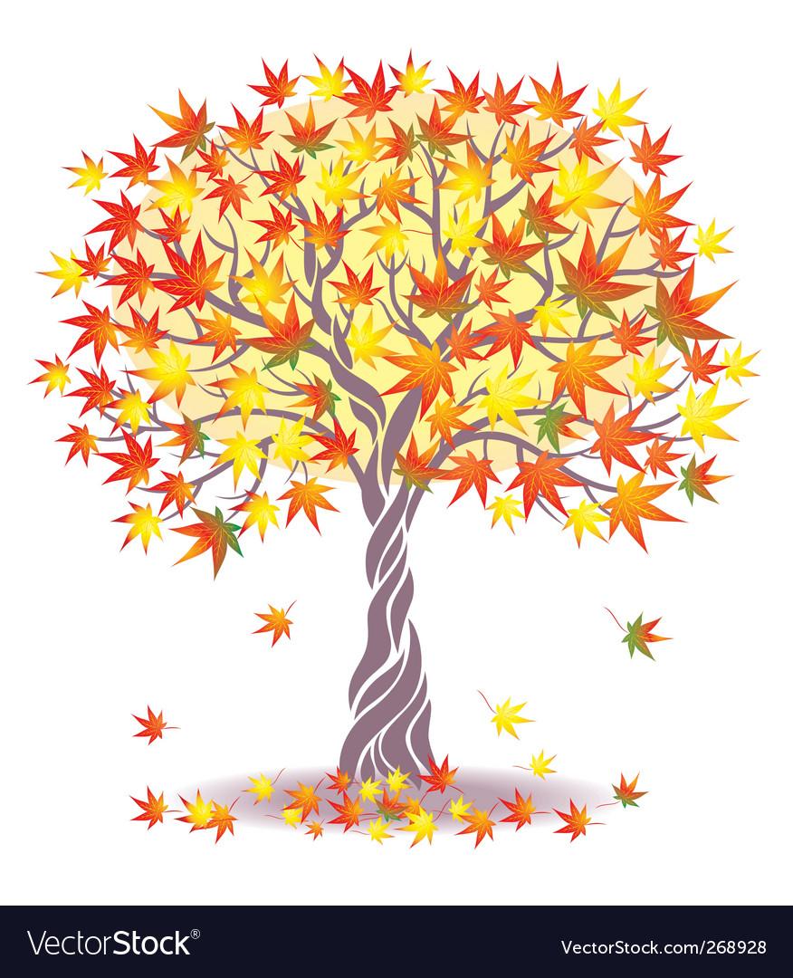 Maple tree vector | Price: 1 Credit (USD $1)