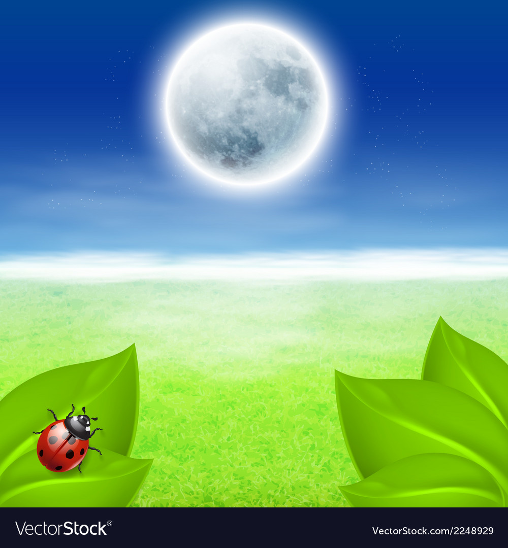 Background with fullmoon green grass and ladybird vector | Price: 1 Credit (USD $1)