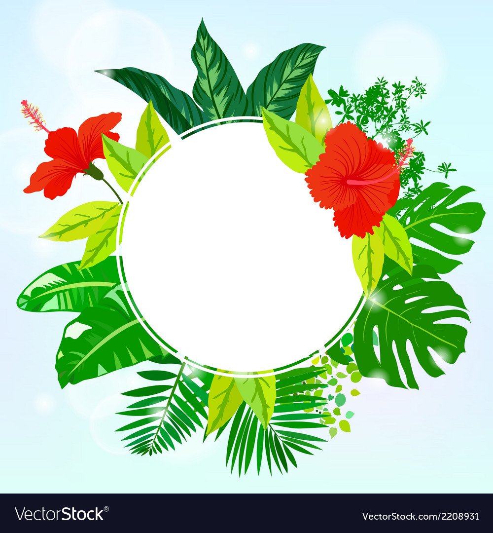 Card with tropical flowers palm and banana leaves vector | Price: 1 Credit (USD $1)
