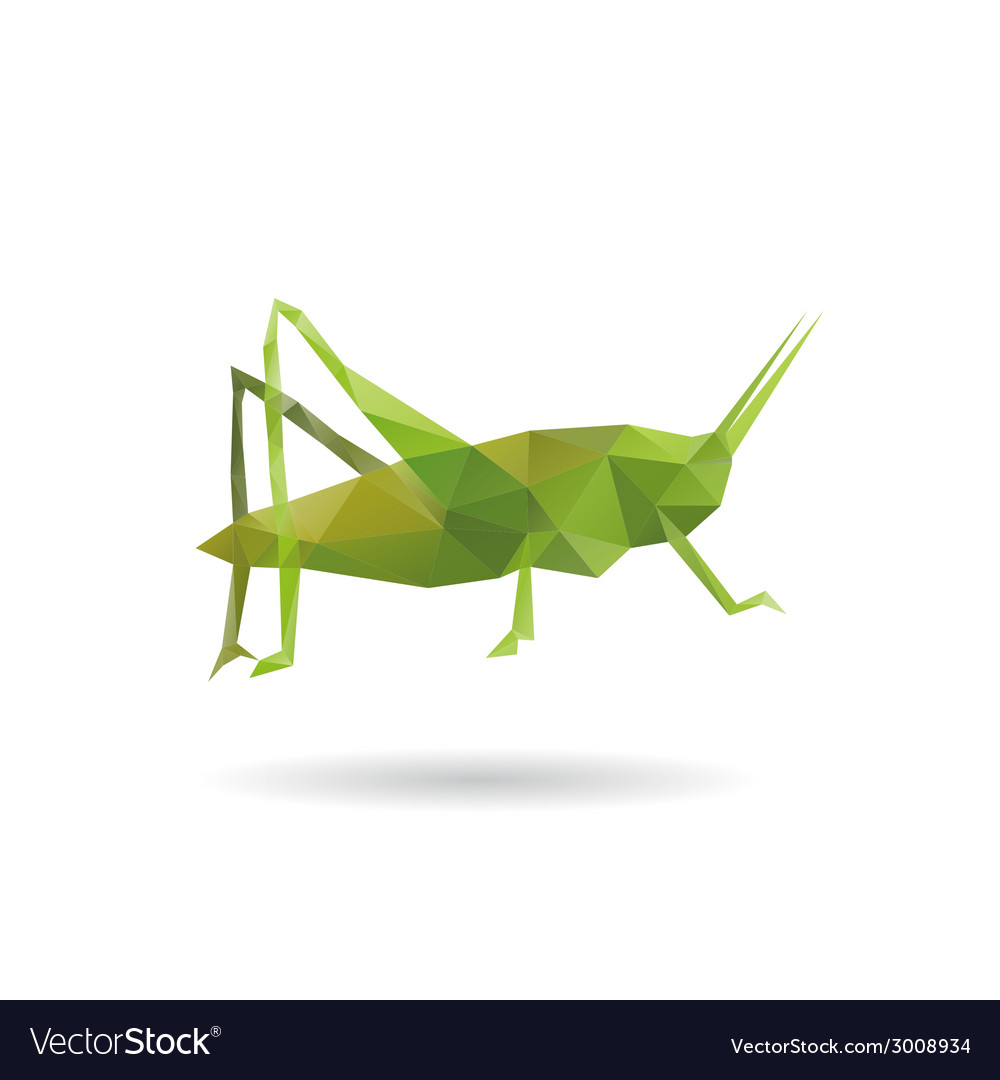 Grasshopper abstract isolated vector | Price: 1 Credit (USD $1)
