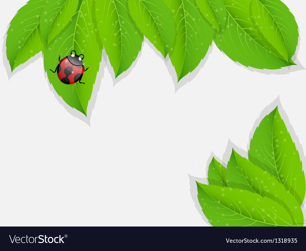 Nature background vector   Price: 1 Credit (USD $1)
