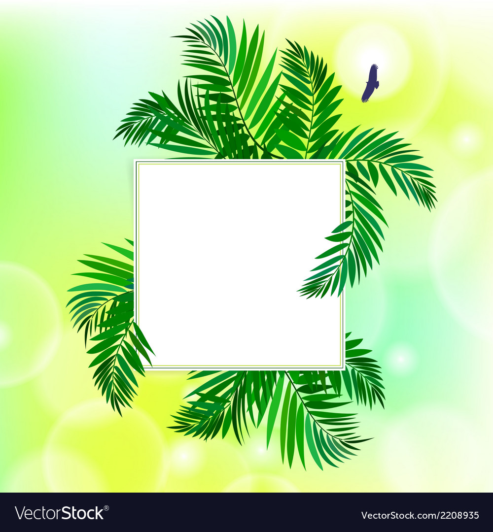 Square card with palm leaves vector | Price: 1 Credit (USD $1)