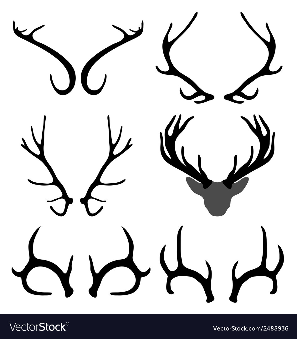 Antlers of deer vector | Price: 1 Credit (USD $1)