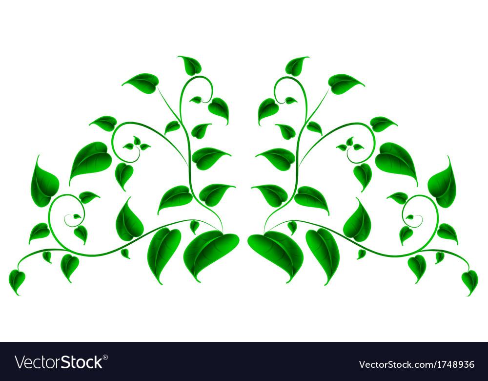 Green leaf vector | Price: 1 Credit (USD $1)