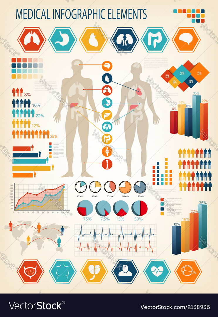 Medical infographics elements human body with vector
