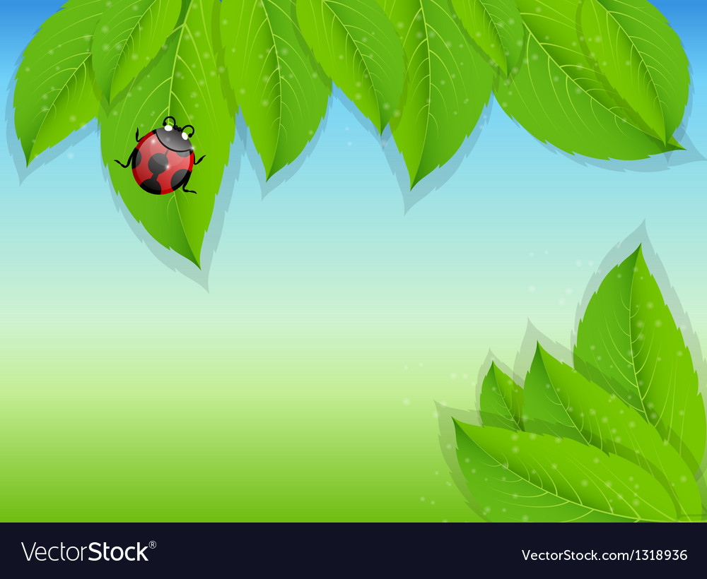 Nature background vector | Price: 1 Credit (USD $1)