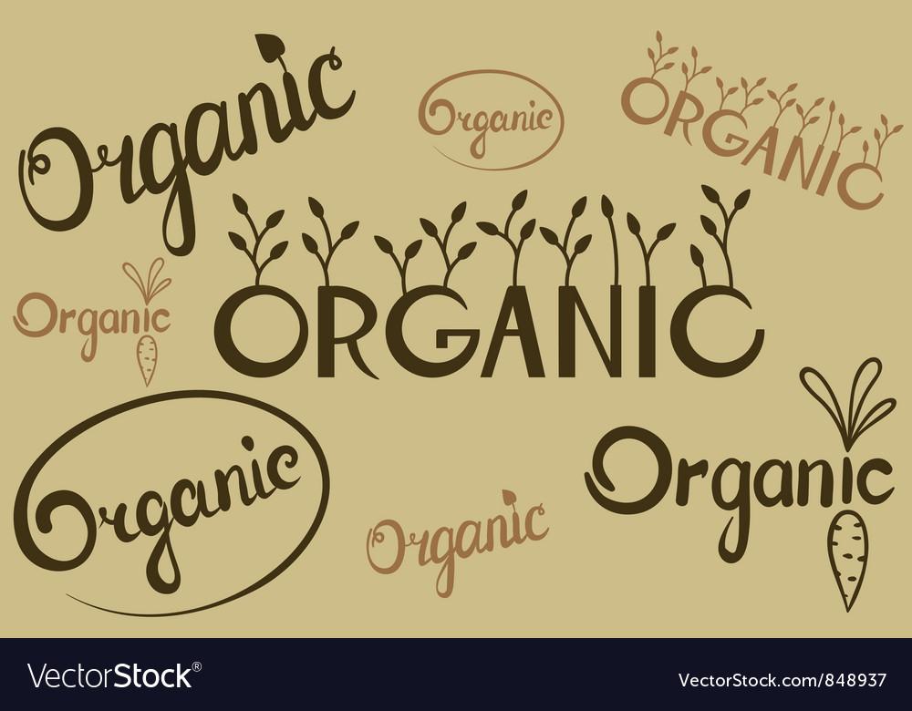 Organic lettering vector | Price: 1 Credit (USD $1)