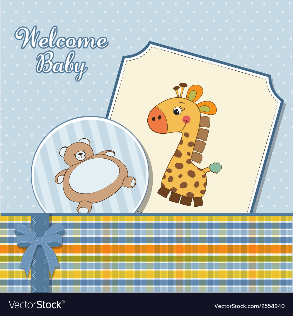 Baby boy announcement card vector | Price: 1 Credit (USD $1)