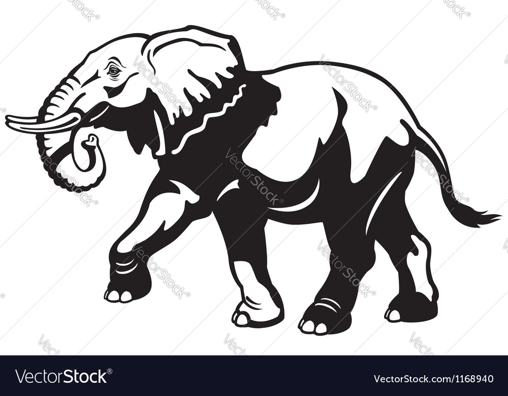 Elephant black white vector | Price: 1 Credit (USD $1)