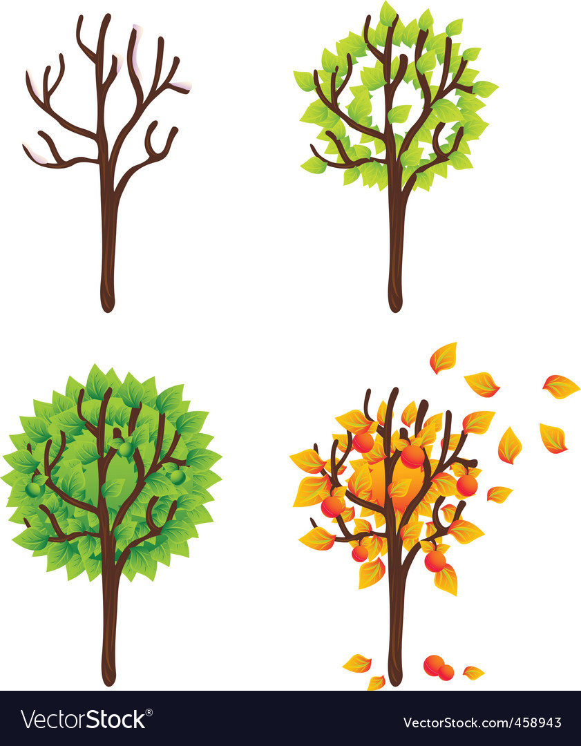 Ed trees seasonal vector set vector | Price: 1 Credit (USD $1)