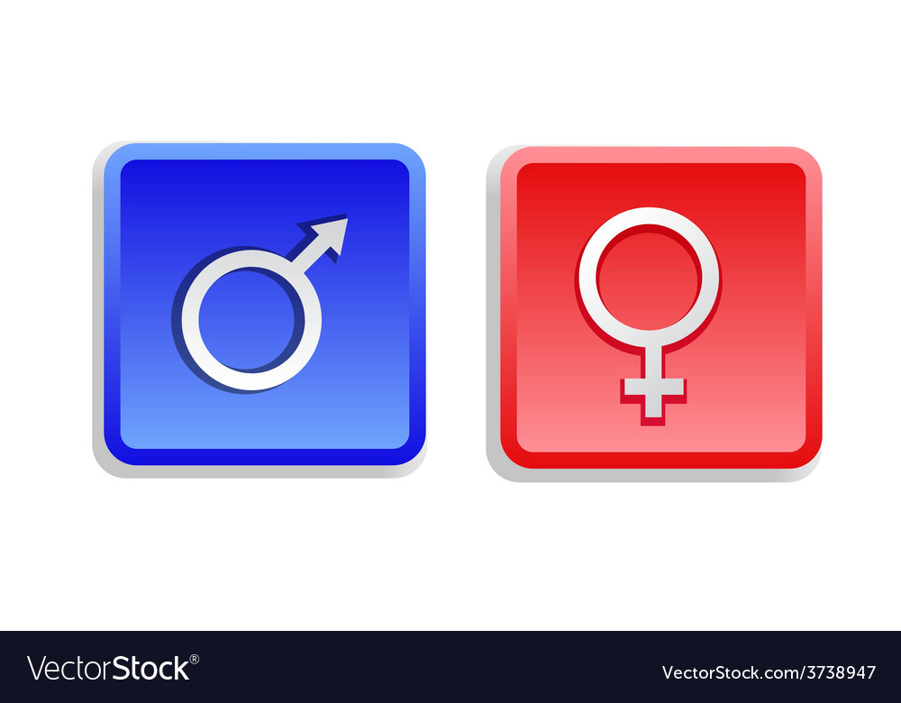 Two gender sign buttons vector | Price: 1 Credit (USD $1)