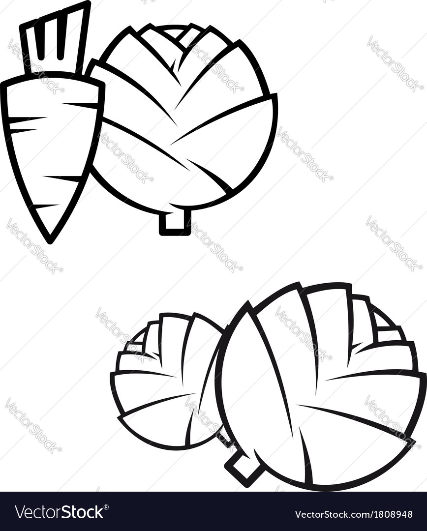 Carrotscabbage and artichokes vector | Price: 1 Credit (USD $1)