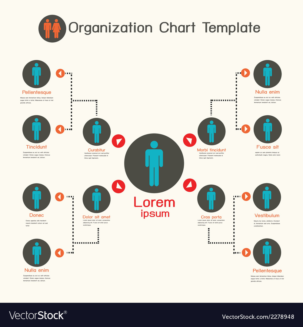 Organization chart template business presentation vector | Price: 1 Credit (USD $1)