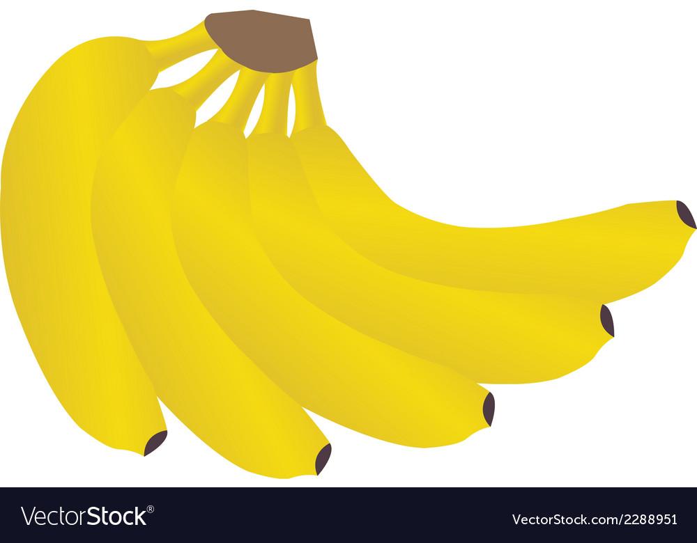 Banana2 vector | Price: 1 Credit (USD $1)